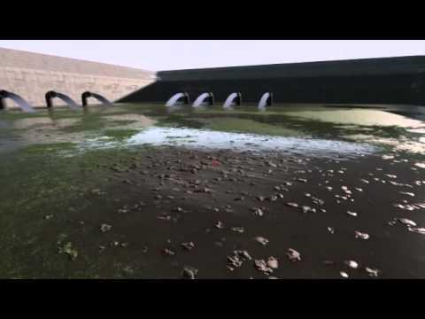 modoとアンリアルエンジンで湿地帯