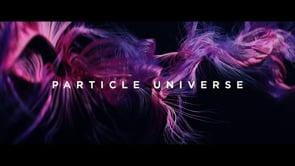 Particle Universe