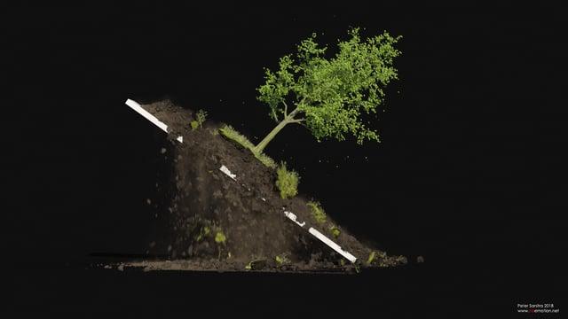 木と土のシミュレーション